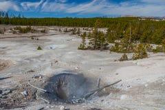 Национальный парк Йеллоустона Стоковое Изображение RF
