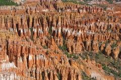Национальный парк каньона Bryce, Юта, Соединенные Штаты Стоковое фото RF