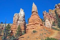 Национальный парк каньона Bryce, Юта, Соединенные Штаты Стоковое Изображение