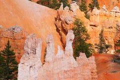 Национальный парк каньона Bryce, Юта, США. Стоковые Фотографии RF