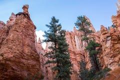 Национальный парк каньона Bryce, Юта, США Стоковые Фото