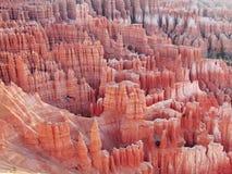 Национальный парк каньона Bryce Стоковое Фото