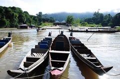 Национальный парк Малайзия Ulu Tembeling стоковое изображение rf