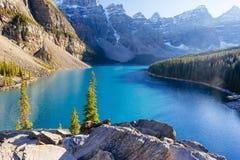 Национальный парк озера морен, Lake Louise, Banff, Альберта, Канада Стоковое Изображение