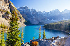 Национальный парк озера морен, Lake Louise, Banff, Альберта, Канада Стоковое фото RF