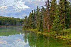 Национальный парк озера Херберт, Banff, Канада Стоковое фото RF