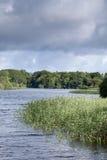 Национальный парк озера Leane залива, Killarney Стоковая Фотография RF