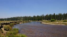 Национальный парк при река бежать до конца Стоковое фото RF