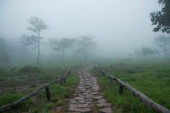 Национальный парк ремня Sai Стоковое Фото