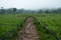 Национальный парк ремня Sai Стоковые Изображения