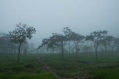 Национальный парк ремня Sai Стоковые Изображения RF