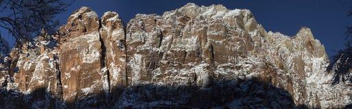 Национальный парк Сиона в снеге 8 Стоковые Фото