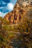 Национальный парк Сиона с рекой девственницы ниже Стоковые Фото