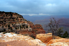 национальный парк США каньона грандиозный Стоковые Изображения