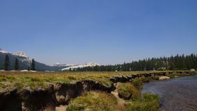 Национальный парк с частью реки Стоковое Изображение
