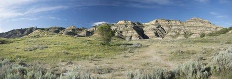 Национальный парк Теодора Рузвельта панорамный стоковые изображения