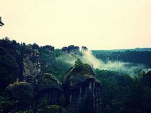 Национальный парк Швейцарии Saxon Bastei Стоковое Изображение RF