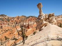 Национальный парк Юта каньона Bryce, Соединенные Штаты стоковая фотография rf