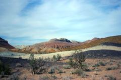 Национальный парк Altyn-Emel, каньон Ak-Tau Стоковое Изображение