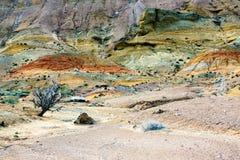 Национальный парк Altyn-Emel, каньон Ak-Tau Стоковые Изображения RF