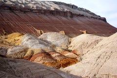 Национальный парк Altyn-Emel Стоковое Фото
