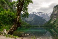 Национальный парк Berchtesgaden в Альпах Стоковые Фотографии RF
