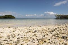 Национальный парк Biscayne Стоковые Фото