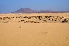 Национальный парк Corralejo на Фуэртевентуре, Испании стоковые фото