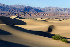 Национальный парк Death Valley стоковая фотография rf