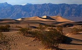 Национальный парк Death Valley Стоковые Изображения
