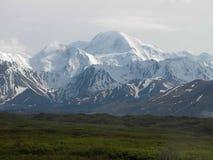 Национальный парк Denali - Аляска Стоковое Изображение