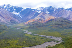 национальный парк denali Аляски стоковая фотография
