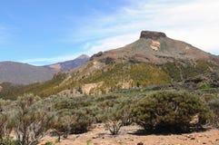 Национальный парк El Teide на Тенерифе (Испания) Стоковые Изображения