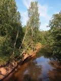 Национальный парк Gauja (Латвия) Стоковое Изображение RF