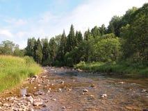 Национальный парк Gauja (Латвия) Стоковые Изображения
