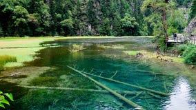 национальный парк jiuzhaigou фарфора sicuan Стоковая Фотография RF