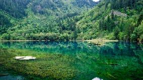 национальный парк jiuzhaigou фарфора sicuan Стоковое Изображение