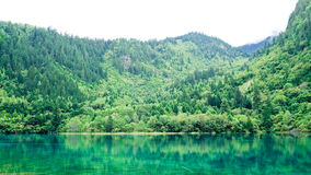 национальный парк jiuzhaigou фарфора sicuan Стоковые Изображения RF