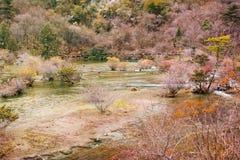 Национальный парк Jiuzhaigou Стоковое фото RF