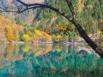 Национальный парк Jiuzhaigou стоковые изображения rf
