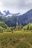 Национальный парк Jostedalsbreen, Норвегия стоковая фотография rf