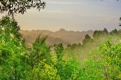 Национальный парк KhadimNagar стоковая фотография rf