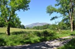 Национальный парк Killarney, Ирландия Стоковые Фотографии RF