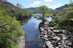 Национальный парк Killarney, Ирландия Стоковое фото RF