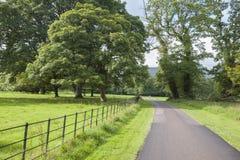 Национальный парк Killarney; Керри графства Стоковые Изображения
