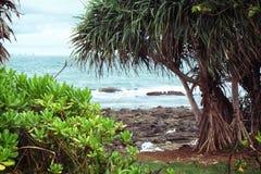 Национальный парк Koh Lanta стоковые фото