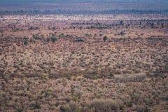Национальный парк Kruger Стоковые Изображения RF