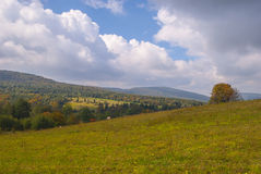 Национальный парк Magura (парк Narodowy Magurski) Стоковая Фотография RF