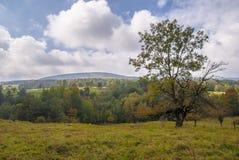 Национальный парк Magura (парк Narodowy Magurski) Стоковая Фотография