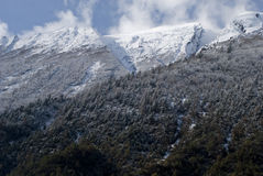 Национальный парк Manaslu Непал Wanderful гималайский стоковое фото